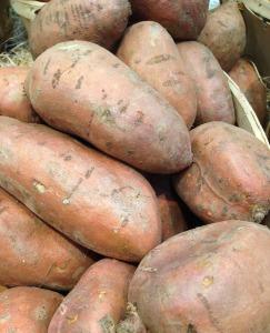 vegetables-976165_1920